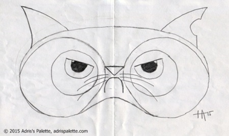 eye pillow grumpy cat