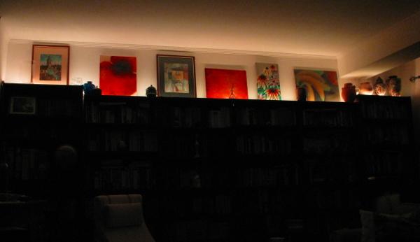 LED bookshelf painting illumination